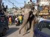 Een stadsbeeld (New Delhi) wat op zichzelf al vol potentiële ervaringen zit. Dit soort gedeelde belbronnen (en ook de toevallige belbronnen) bepalen het bezoek aan grote steden.  Uiteraard is zo´n stad vol authenticiteit – Foto 7/India